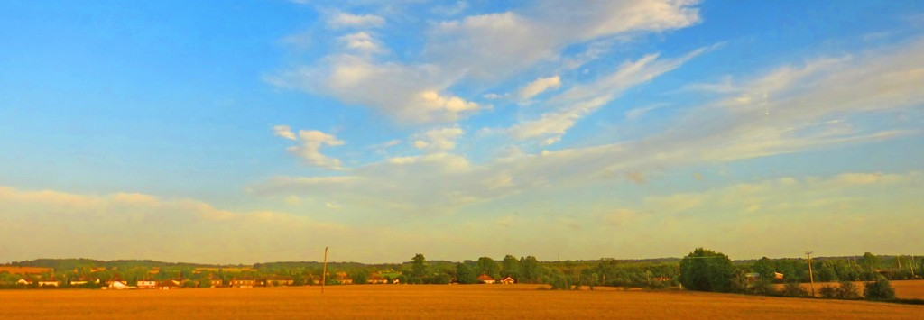 Witham fields at dusk