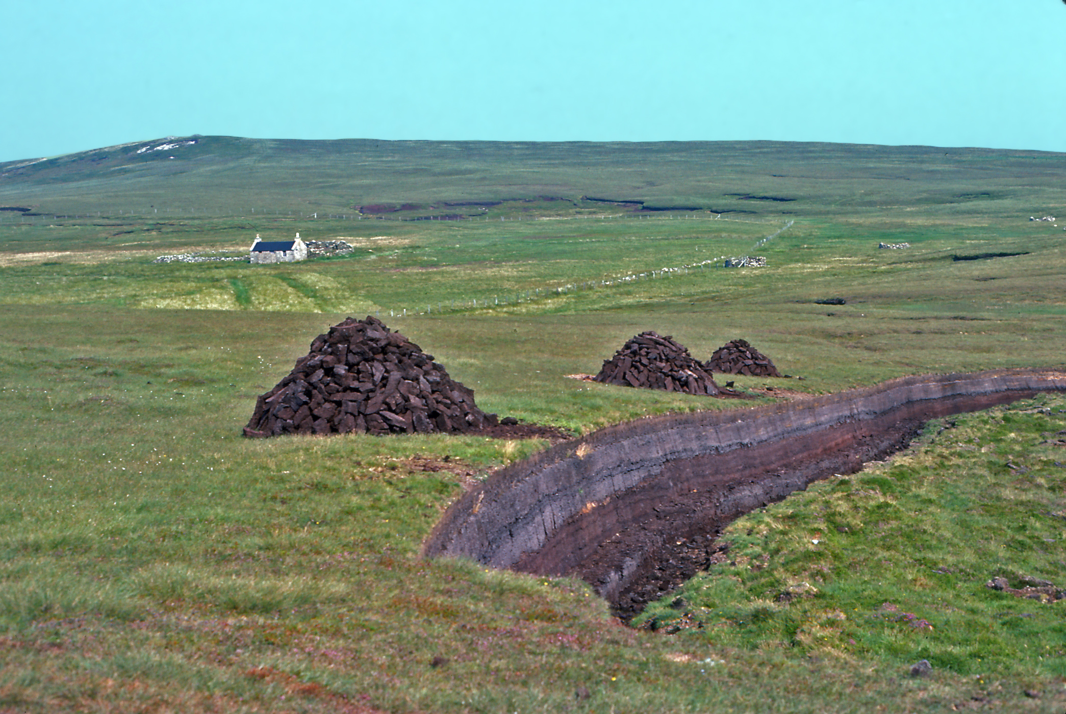 Photo 12 - Domestic peat cutting bank Isle of Foula - Shetland